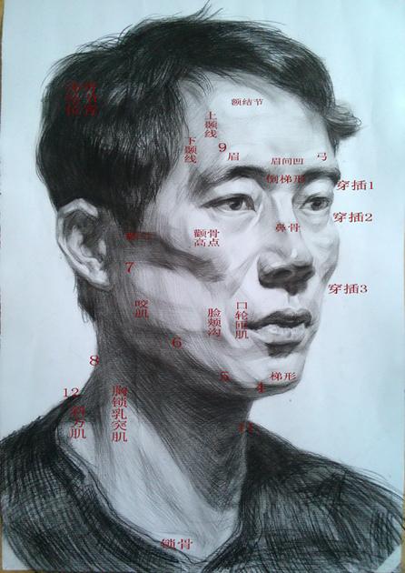 素描头像步骤 - 重庆培训新闻